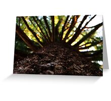 Exploding Tree Greeting Card
