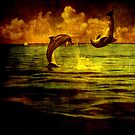 Dolphins jumping by Susanne Van Hulst