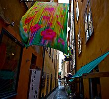 Stockholm - Gamla Stan. Sweden. by Brown Sugar . Views (141) Favorited by (1) . Featured* Thank you very much !!! by © Andrzej Goszcz,M.D. Ph.D