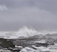 Hurricane Earl by oceaNSedge