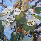 Pear Blossom by Marie Edlin