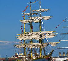 Beautiful Ship by Lee d'Entremont