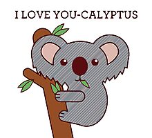 Cute koala Photographic Print
