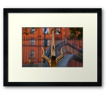 The Crown Framed Print
