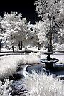 Fountain - Dunrobin, Ontario by Debbie Pinard