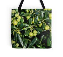 Lush and shiny foliage with many little green balls... Tote Bag