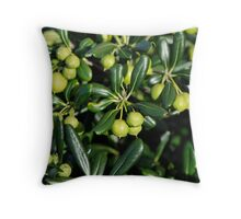 Lush and shiny foliage with many little green balls... Throw Pillow