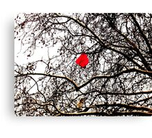 Deflated Red Balloon in a Tree Canvas Print