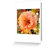 Precious Peach: Blooms in Boothbay Harbor Greeting Card