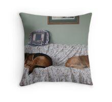 Sneaking A Nap! Throw Pillow