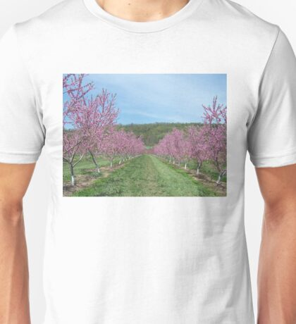 Peach Orchard in Bloom Unisex T-Shirt