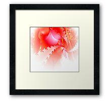 Red B. Framed Print