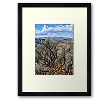 Untamed West (Sagebrush) Framed Print