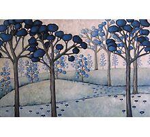 blue landscape #2 Photographic Print