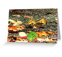 Busy little Chipmunk Greeting Card