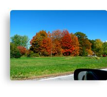 """Drive By"" - Autumn Leaves Canvas Print"