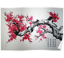 Plum blossoms Poster