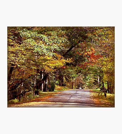 An Autumn Drive Photographic Print
