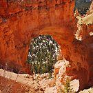 Natural Bridge by Gregory Ballos | gregoryballosphoto.com