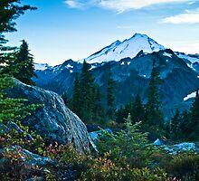 Mt. Baker by Appel