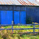 Barn's Blue Doors...............Why? by Larry Llewellyn