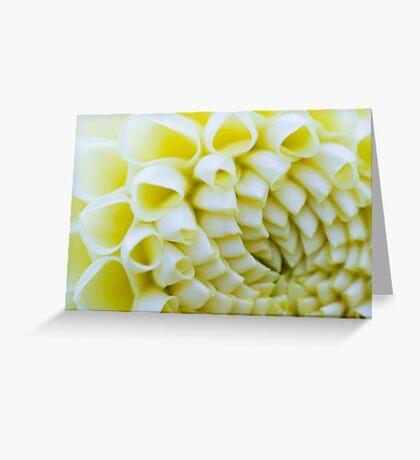 White Flower #2 - Thuya Garden Greeting Card