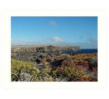Galapagos Cliffs Art Print