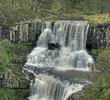 Ebor Falls, Northern NSW, Australia by Adrian Paul