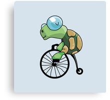 Turtle Likes to Ride. Canvas Print
