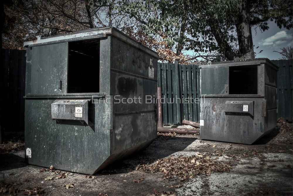 Dumpsters by Eric Scott Birdwhistell