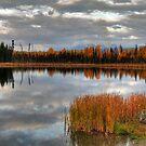 Autumnal lake by zumi