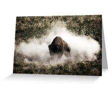 Bison IV Greeting Card