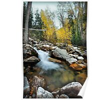 Little Cottonwood Canyon - Stream Poster