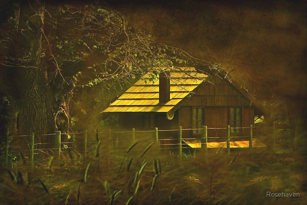 """""""The Hen House... """" by Rosehaven"""