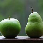 The Apple &amp; Pear Sat Quietly Taking in the View... by Carol Knudsen