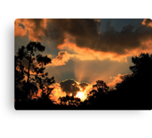 The morning  offering Canvas Print
