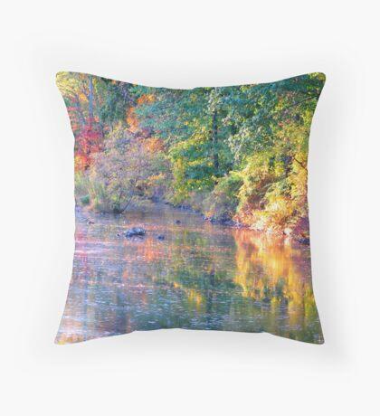 Marsh Creek at Dusk Throw Pillow