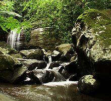 Serenity Falls by Raychel