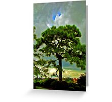 Patience Breeds Beauty Greeting Card