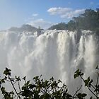 Victoria Falls, Zambia, Africa by Adrian Paul