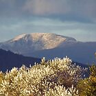 A view of Snowdonia by sandmartin