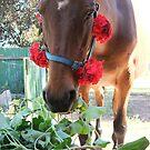 Senorita Sally does the gardening by TheMobFanClub
