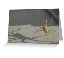 Dancing with his shadow Greeting Card