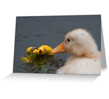 Stop and Smell the Flowers: Yellow Mallard Duckling Greeting Card
