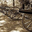 Shiloh Civil War Battlefield 2 by Edward Myers
