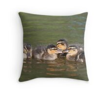 Time for a Chat: Mallard Ducklings Throw Pillow