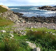 Near Na Fir Chlis ~ Opinan, Wester-Ross, Scotland by artwhiz47
