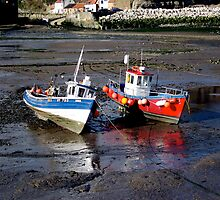 Staithes Harbour by Sue Nichol