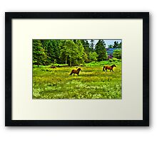 Classic Country Framed Print