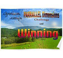 PARRALLEL Dimensions Challenge Winner Banner Poster